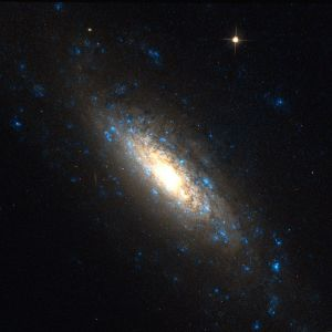 NGC 5879 in Draco