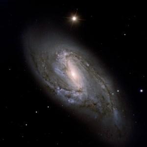 Messier 66 in Leo