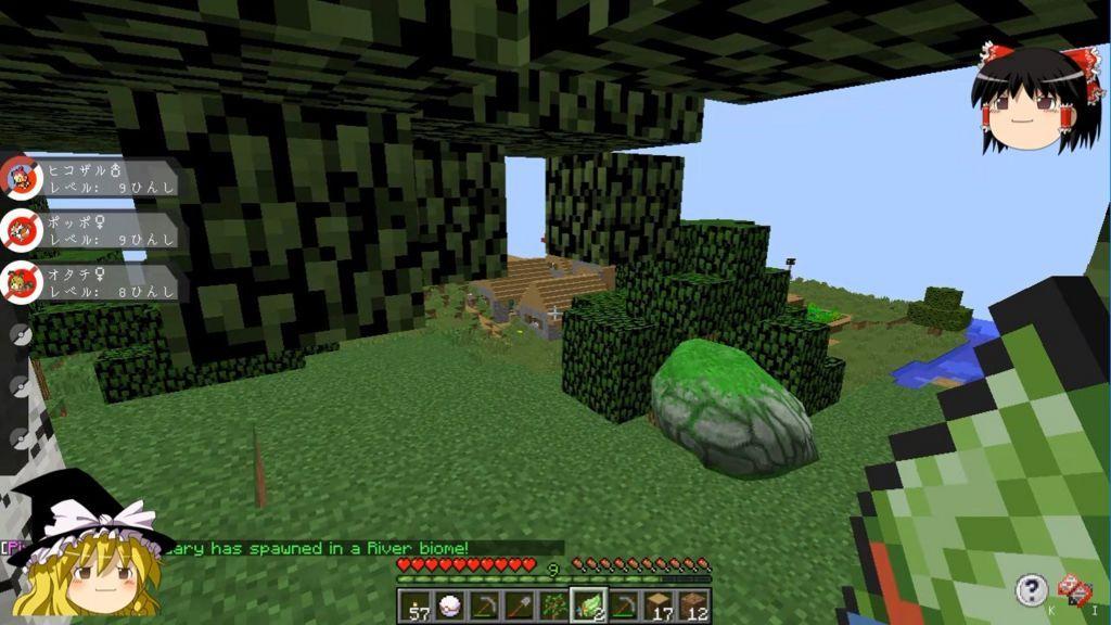 コケでおおわれた岩を発見