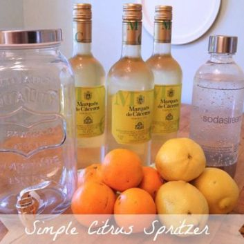Simple Citrus Spritzer