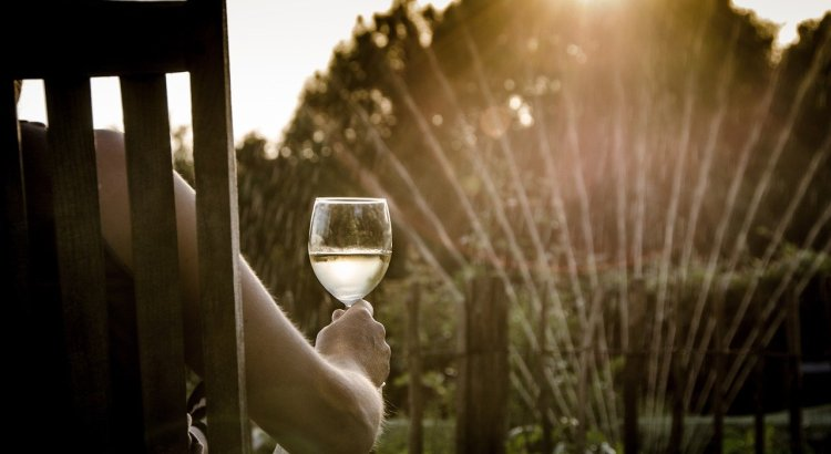 Summer Wine People Woman Glass  - Skitterphoto / Pixabay