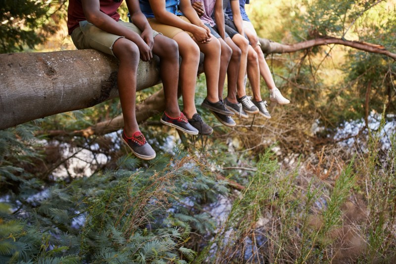 Cropped shot of a group of boys' legs dangling from a branch they're sitting on