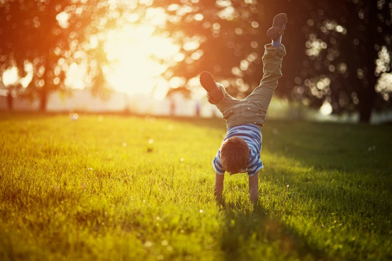 Portrait of a little boy having fun on grass in park or garden. The boy is standing on hands. Sunny spring or summer evening.