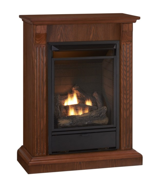 Free Standing Gas Fireplace