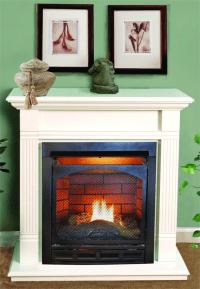 Gas Fireplaces Vented : Gas Fireplaces Vented Designs. Gas ...