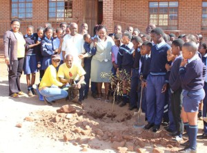 Deo Gloria Primary school also got trees planted during National Arbor Week by Marakele SanParks and TLM members.