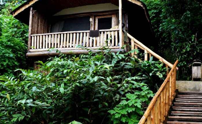 Kwezi Outdoors mountain gorilla tracking accommodation