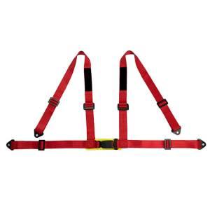 racing car seat belt (1)
