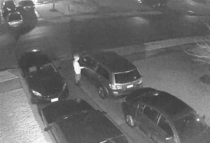 Buda car burglars caught on camera_257652