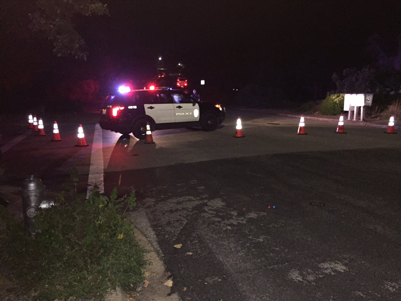 SWAT called to Fireoak Drive Sunday, September 18, 2016._349594