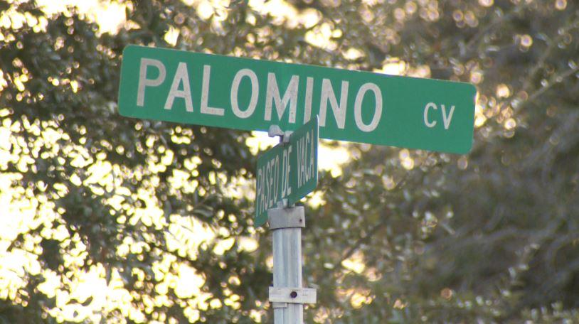 Palomino Cove burglary_390735