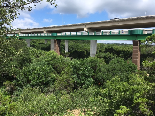 Barton Creek bike_ped bridge opens_489793