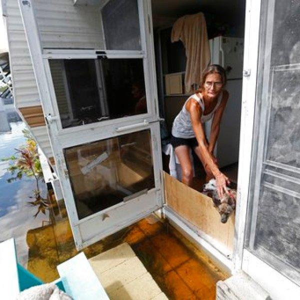 Irma The Poor_544675