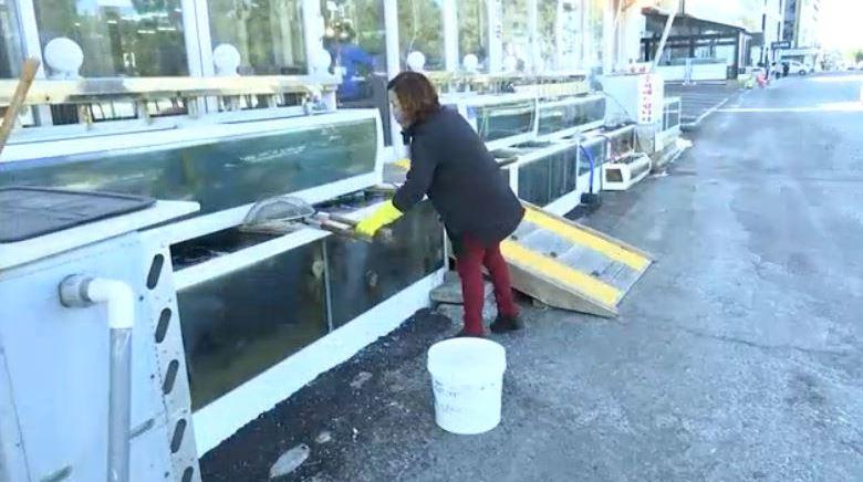 fishmarket1_1518178250227-54729046.JPG