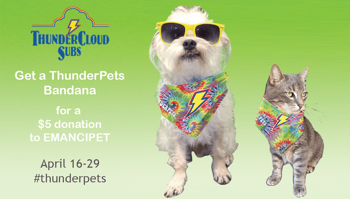 Thunderpets_1524863937326.png