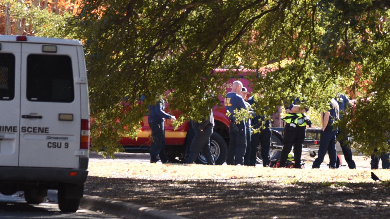 man's body found in lady bird lake 2_1543251800222.jpg.jpg