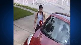 hutto car burglary 3