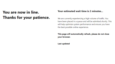 Wait times are possible as the site handles the high volume of traffic.