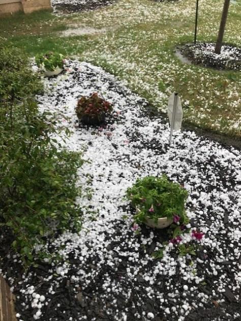 Hail in Liberty Hill April 15, 2021 - Wanda Sweeney