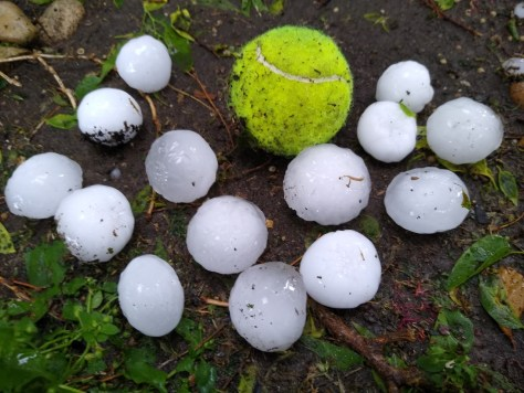 Hail in Round Rock April 15, 2021 - Melissa Adcock