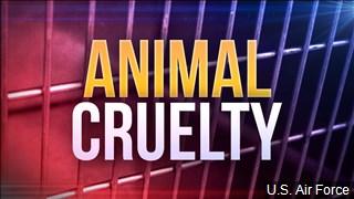 AnimalCrueltyCG_1535046607504.jpg