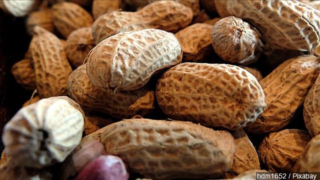 peanut_allergy_mgn_640x360_50224P00-JCVQH_1542666433403.jpg