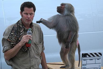 kevin-keith-baboon.jpg