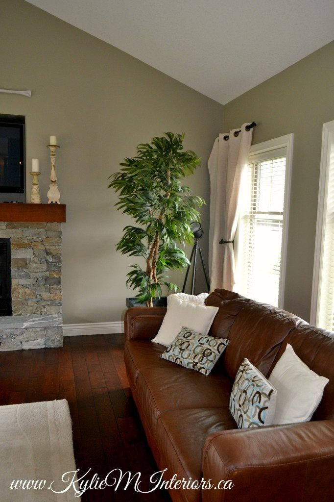 best paint colours for small living room green colour scheme benjamin moore gray mirage with slate stone ...
