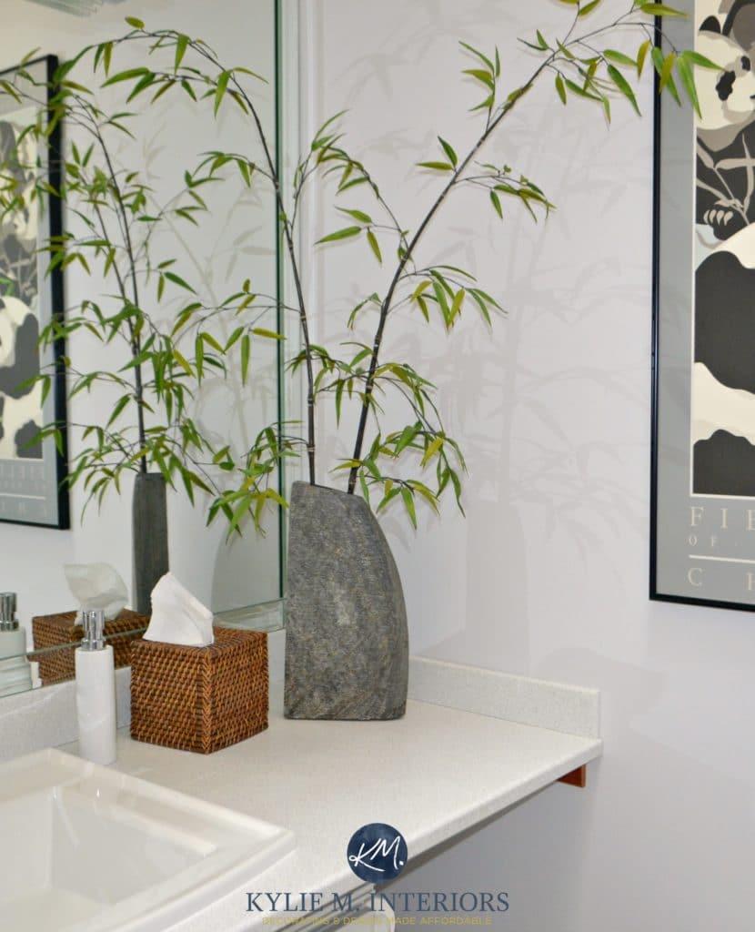 Benjamin Moore Stonington Gray in a bathroom with bamboo