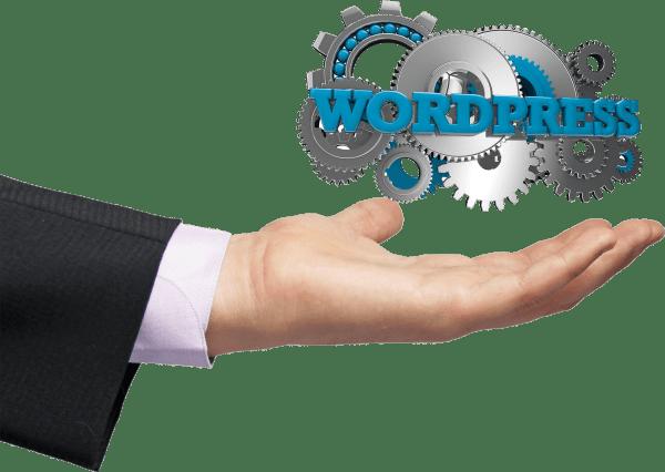 Site internet, Formation, Hébergement web, nom de domaine | Kynon Wordpress
