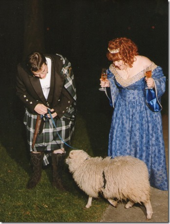 Wedding - Sheep