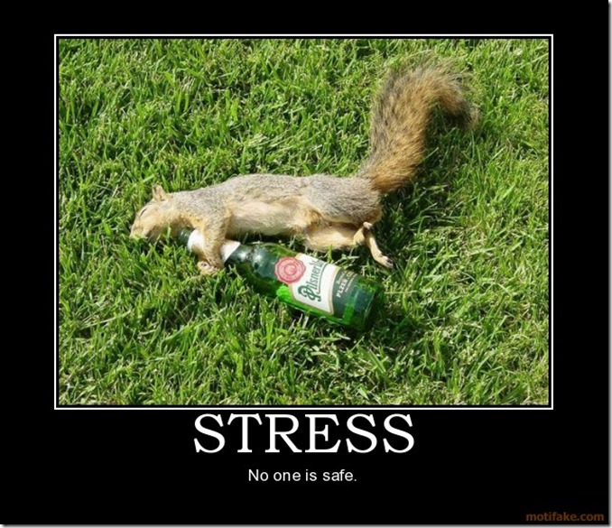 stress-squirrel-drunk-stress-demotivational-poster-1260284199
