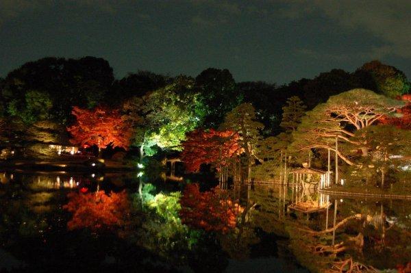 Rikugien_Garden_Night_Autumn_Colors_Tokyo