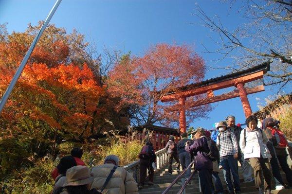 Takao_Autumn_Foliage_Kyoto_Japan