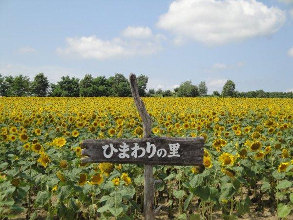 himawari_no_sato
