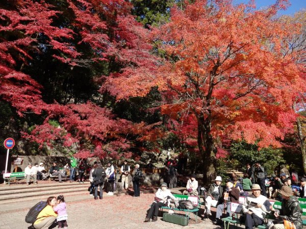 mount_takao_fall_colors