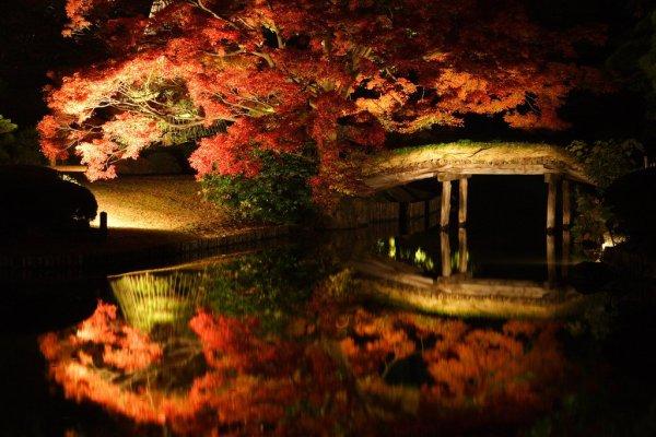 rikugien_garden_autumn_foliage