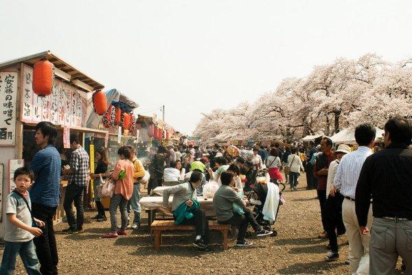 kakunodate_sakura_matsuri_food_stalls