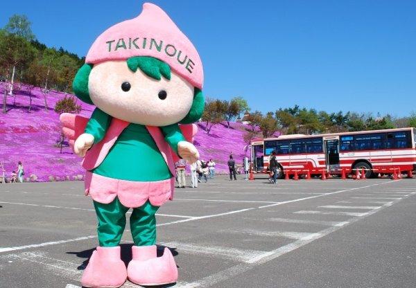 takinoue_shibazakura_festival_hokkaido