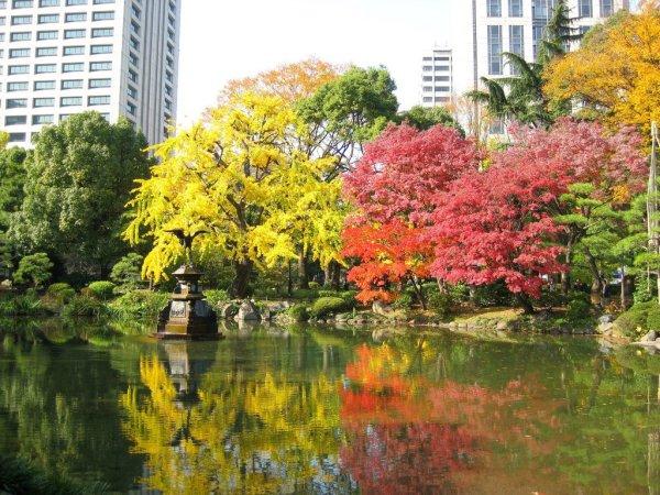 hibiya_park_fall_colors_tokyo