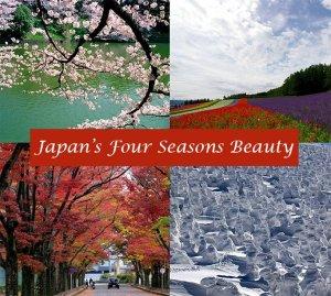 japan_four_seasons_beauty