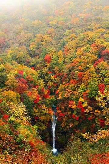 komadome_falls_autumn_foliage_tochigi
