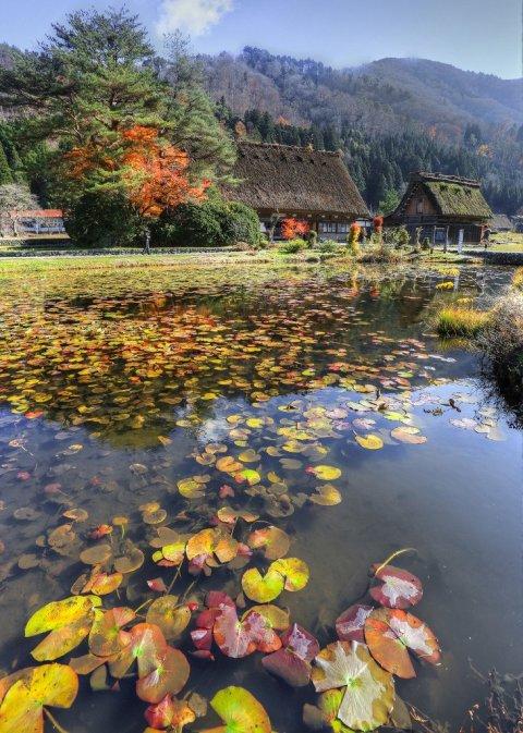 pond_shirakawago