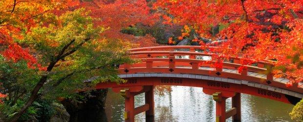 Japan Autumn Travel Guide