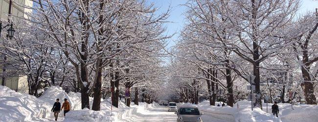9 Days in Hokkaido Winter Itinerary | Dec-Jan