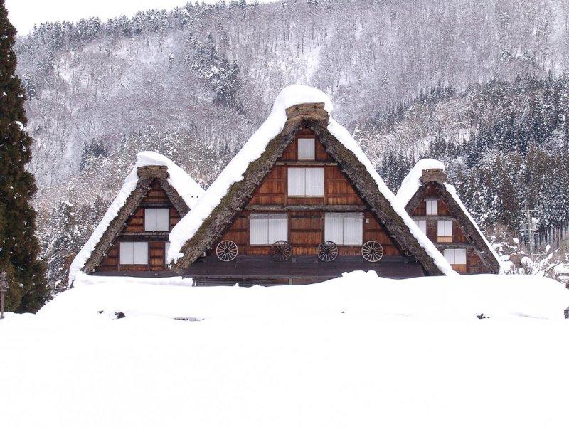 Calendar Says Its Winter But I Find >> 2020 Japan Winter Festivals Calendar Kyuhoshi