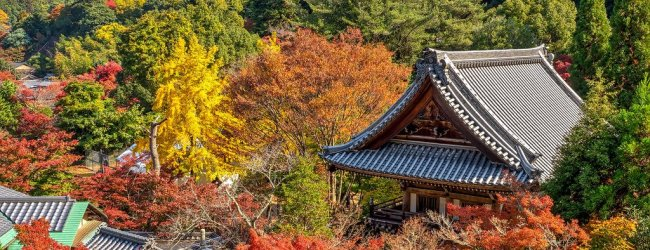 Japan Temple and Shrine Etiquette | Travel Guide