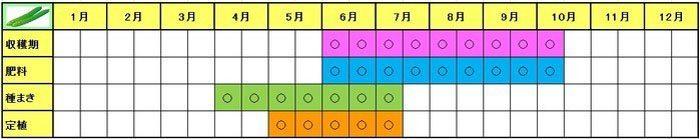 kyuri-Schedule