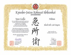 Shodan-Tom-Gallo