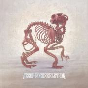 aesop-rock-skelethon